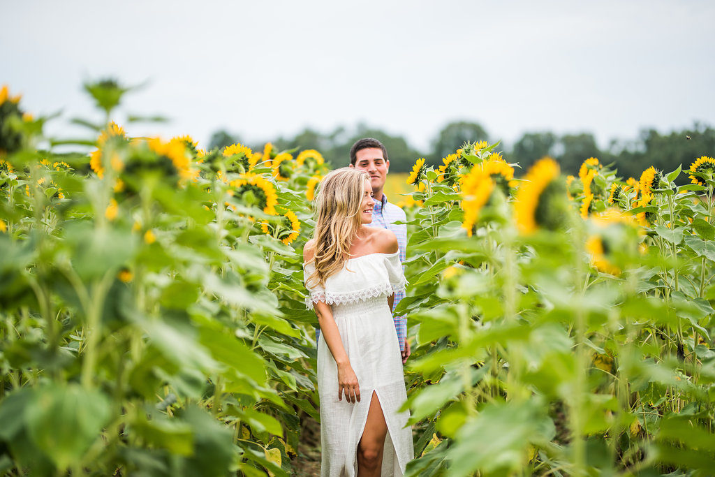 walk in the sunflowers romantic engagement