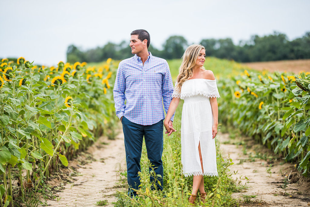 sunflowers romantic engagement look away